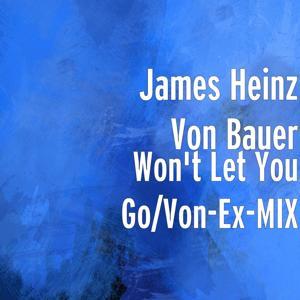 Won't Let You Go/Von-Ex-MIX