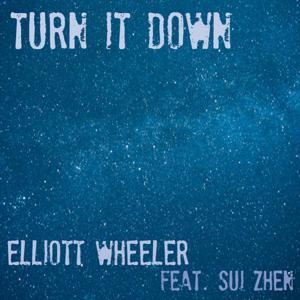Turn It Down (feat. Sui Zhen)