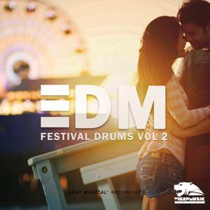 EDM Festival Drums, Vol. 2 (Tools)