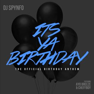 Its Ya Birthday (The Official Birthday Anthem ) [feat. Ayo Breeze & Cheffboy]