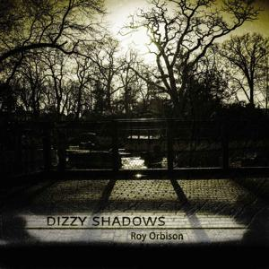 Dizzy Shadows