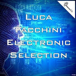 Luca Facchini Electronic Selection