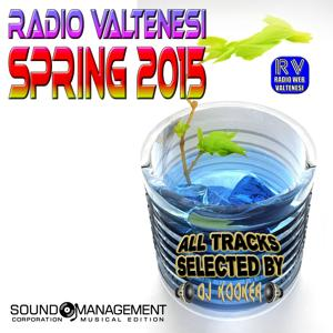 Radio Valtenesi Spring 2015 (All Tracks Selected by DJ Kooker)