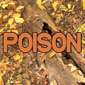 Poison - Tribute to Rita Ora
