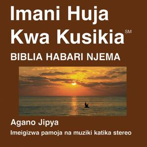Kiswahili New Testament (Umetiwa Chumvi) Habari Njema (Interconfessional) - Kiswahili Bible