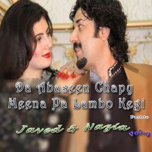 Da Abaseen Chapy Meena Pa Lambo Kegi, Vol. 4