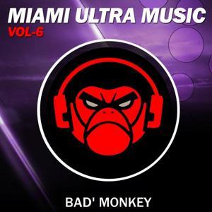 Miami Ultra Music, Vol. 6