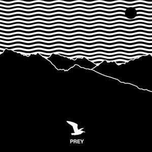 Prey (Album Version)