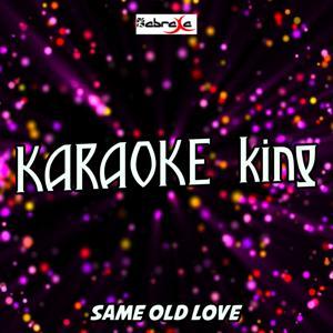 Same Old Love (Karaoke Version) (Originally Performed by Selena Gomez)