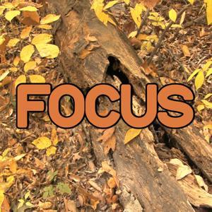 Focus - Tribute to Ariana Grande