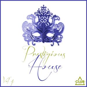 Prestigious House, Vol. 4