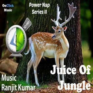 Power Nap - Juice of Jungle (Series II)
