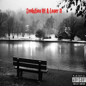 Evolution of a Loner II