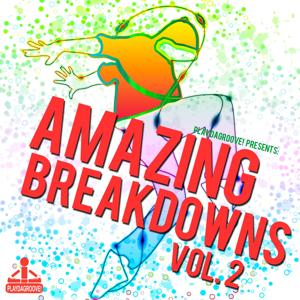 Amazing Breakdowns, Vol. 2