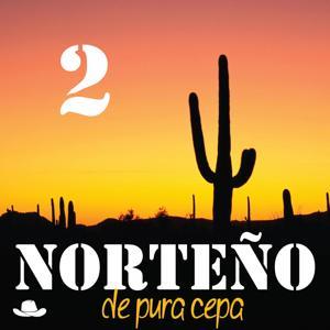 Norteño de Pura Cepa, Vol. 2