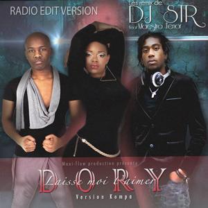 Laisse moi t'aimer (Version Kompa) [DJ Sir Radio Edit]