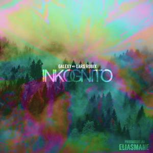 Inkognito (feat. Lars Rubix)
