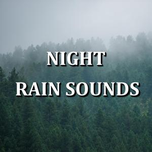 Night Rain Sounds