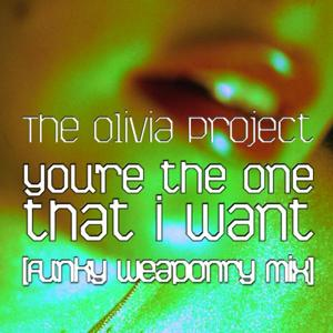 You're The One That I Want (Funky Weaponry Mix)
