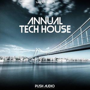 Annual Tech House