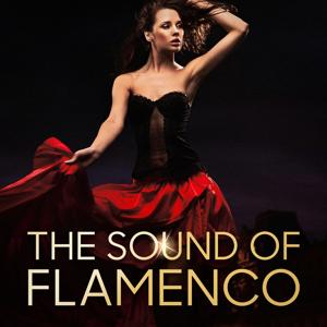 The Sound of Flamenco