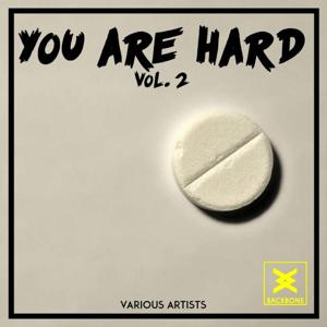 You Are Hard, Vol. 2