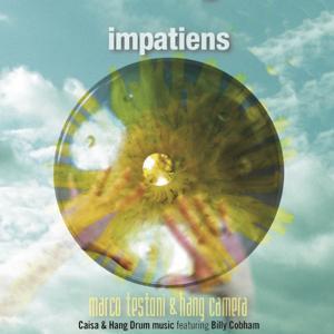 Impatiens (Caisa & Hang Drum Music)