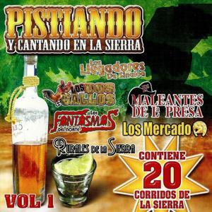 Contiene 20 Corridos De La Sierra Vol.1