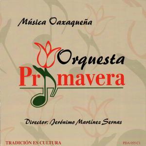 Musica Oaxaquena
