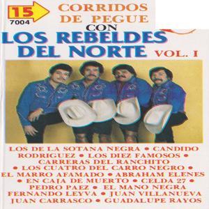 15 Corridos De Pegue Vol. 1