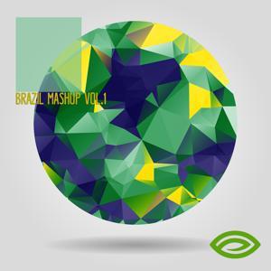 Brazil Mashup Vol.1: STYE 420
