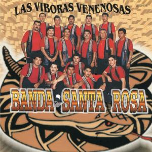 Las Viboras Venenosas