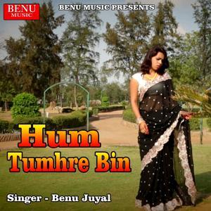 Hum Tumhre Bin