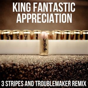 Appreciation (3 Stripes and Troublemaker Remix)