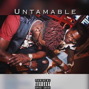 Untamable (feat. Freshiano)
