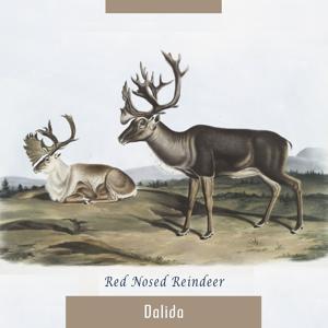Red Nosed Reindeer