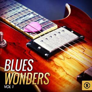 Blues Wonders, Vol. 1