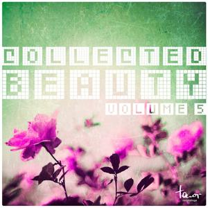 Collected Beauty, Vol. 5