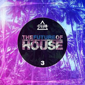 The Future of House, Vol. 3