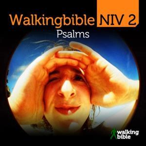Walkingbible Niv 2, Psalms