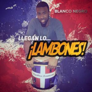 Llegan Lo Lambone