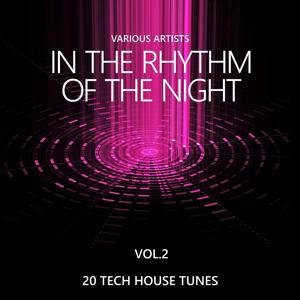 In the Rhythm of the Night (20 Tech House Tunes), Vol. 2