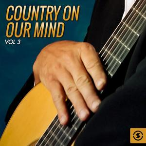 Country on Our Mind, Vol. 3