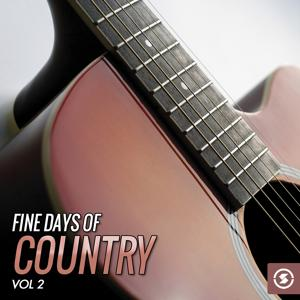 Fine Days of Country, Vol. 2