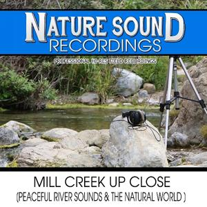 Mill Creek Up Close (Peaceful River Sounds & The Natural World)