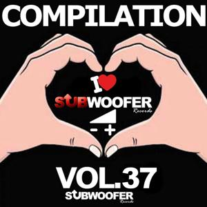 I Love Subwoofer Records Techno Compilation, Vol. 37