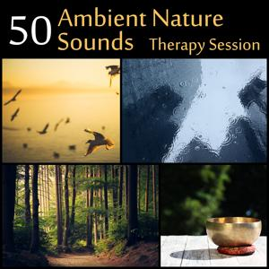50 Ambient Nature Sounds: Therapy Session - Serenity Instrumental Music for Yoga, Meditation, Relax of Spa (Flute & Piano, Tibetan Bowls, Waterfall, Calm Sea, Rain, Birds & Forest)