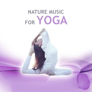 Nature Music for Yoga - The Best Nature Music, Yoga Healing, Ocean Waves, Rain, Birds, Meditation