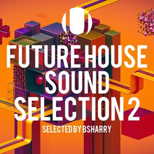 Future House Sound Selection, Vol. 2