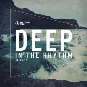Deep In The Rhythm Vol. 2